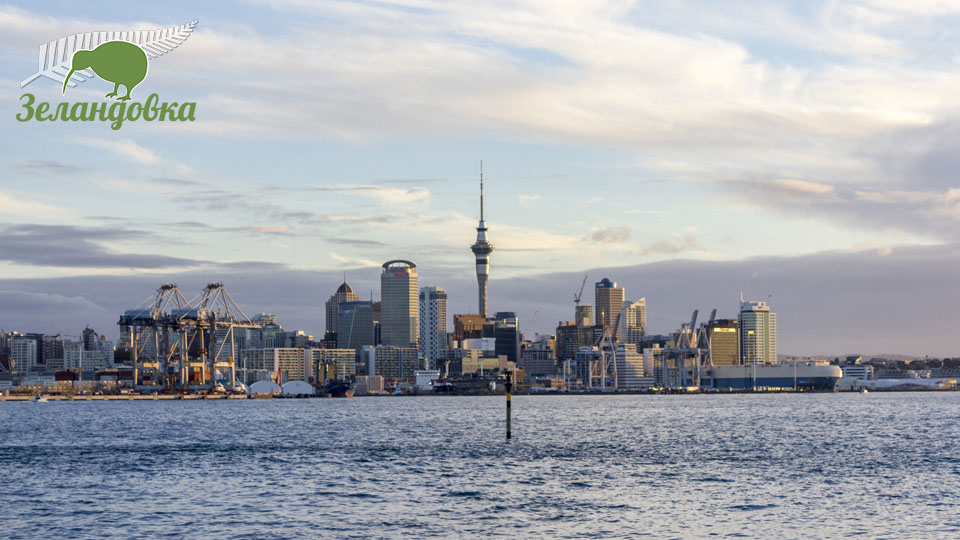 Отзыв Игоря. Образование в Новой Зеландии. Окленд