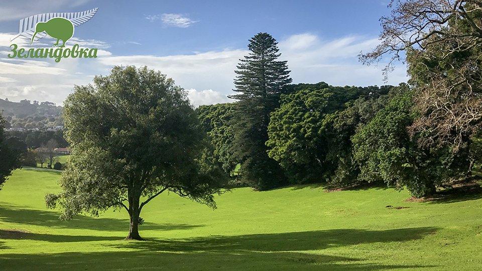 Красивые пейзажи Новой Зеландии