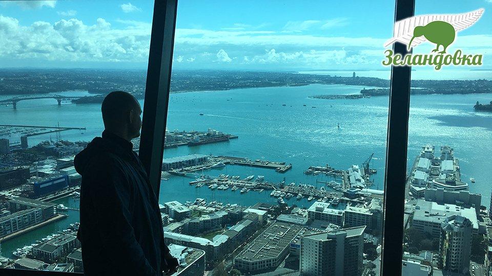Владимир у окна в телебашне Skytower