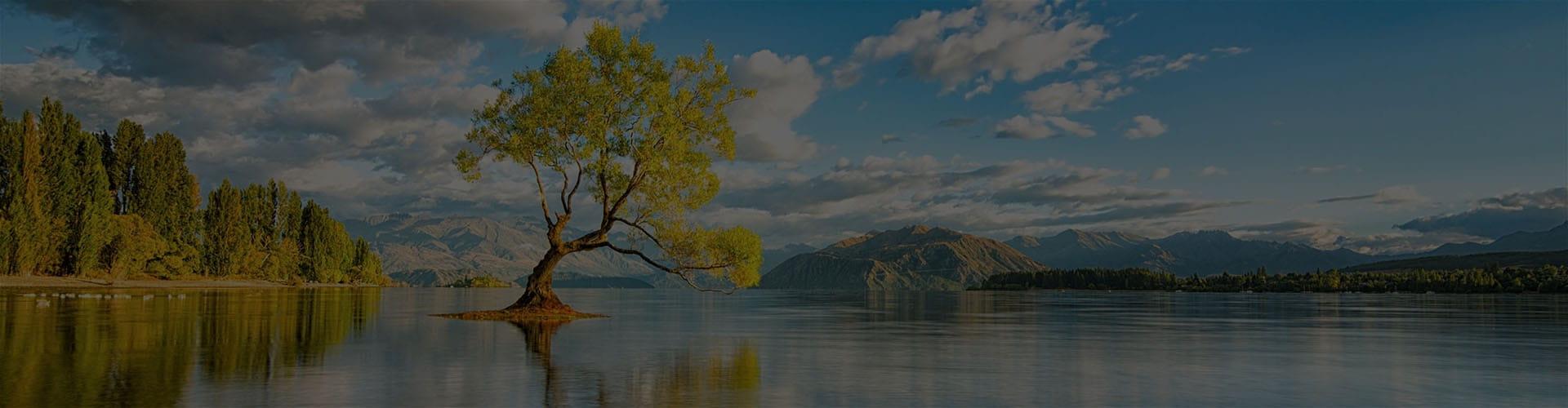 Пейзаж, дерево, озеро и горы