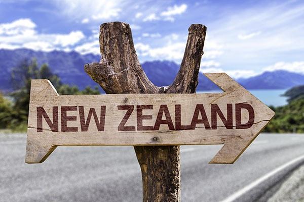 Рабочие визы выпускников в Новой Зеландии