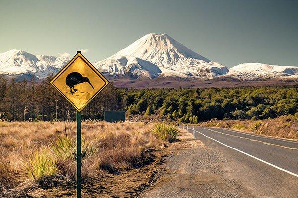 Новозеландский пейзаж и знак Осторожно Киви